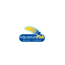aquariumfish