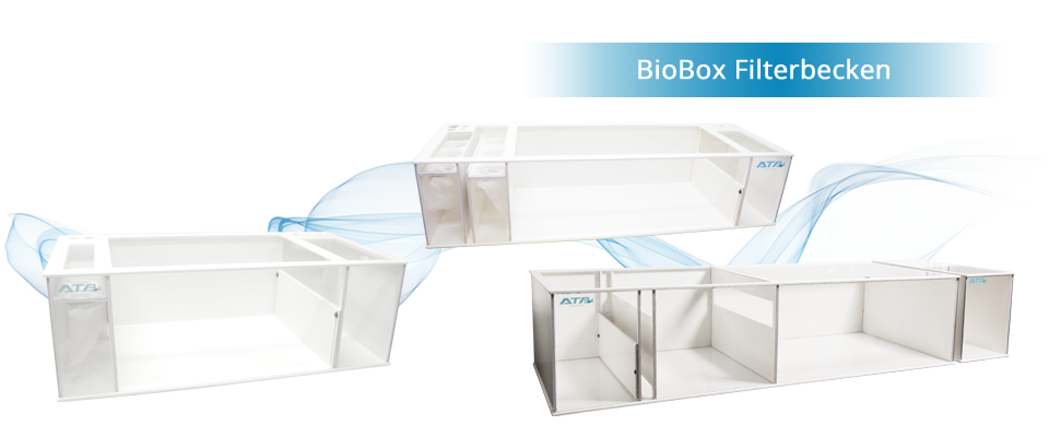 BioBox Filterbecken DE